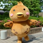 "The costume for the mascot ""Kicho-kun"" (Fukakusa Branch Office, Fushimi Ward, Kyoto)"
