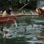 Photo= Chasing fish with senior cormorants, Utti (second from the left) makes its cormorant fishing debut. The end of its leash is marked yellow = Uji River, Uji, Uji City, Kyoto Prefecture