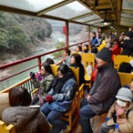 Photo= Passengers enjoying the view from the tram which has resumed service (March 1, Nishikyo Ward, Kyoto)