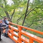 "Photo= Visitors enjoy walking around the ""Momiji-en"" garden which is open to the public (November 2, Kitano Tenman-gu Shrine, Kamigyo Ward, Kyoto)"