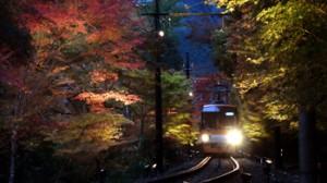 Photo= An Eizan train drives through the illuminated Maple Tree Tunnel (November 8, Shizuichinonaka-cho, Sakyo Ward, Kyoto)