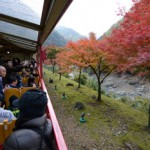 Photo= The tram passing through the valley colored with maple leaves
