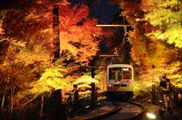 "Photo= Autumn leaves arching over the railway track section called ""Momiji Tunnel"" are illuminated (Eizan Electric Railway Kurama Line)"
