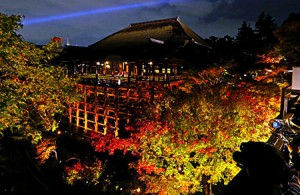 Photo = Maple leaves that have just begun to turn red are vividly illuminated (November 13, Kiyomizu-dera Temple, Higashiyama Ward, Kyoto)