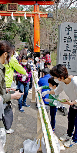 Photo= Participants arrange tea-flavored sweet dumplings for Guinness World Records' recognition (Ujigami Shrine, Uji, Uji City, Kyoto Prefecture)