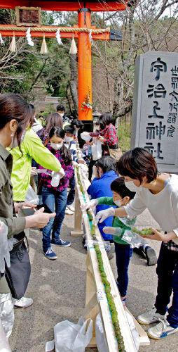 Photo= Participants arrange tea-flavored sweet dumplings for Guinness World Records' recognition (Ujigami Shrine, Uji, Uji City, Kyoto Prefecture)