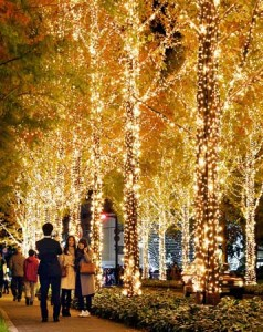 Photo= Residents enjoy the illuminations that decorate the trees (November 24, vicinity of RHOM's head office in Ukyo Ward, Kyoto)