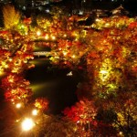 Photo= Autumn deepens. Clear air enhances the brilliantly illuminated autumnal garden even more (November 10, Eikando, Sakyo Ward, Kyoto) = shot via drone