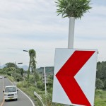 Photo= Are they bamboo leaves spreading boldly from the signpost, or bamboo grass? (Ogi, Otsu City, Shiga Prefecture)