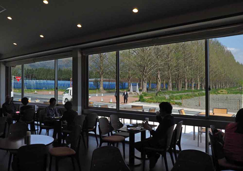 "Interior of the newly opened ""Namiki Cafe Metasequoia."" Customers can see the straight, tree-lined street from the large windows (Makino Pic-land, Terakubo, Makino-cho, Takashima City, Shiga Prefecture)"