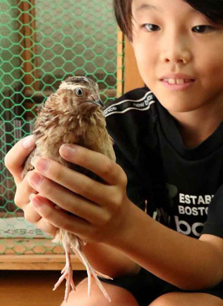 """Shuto holding his quail that hatched in January which he named """"Quail."""" The cage behind them was handmade by his grandfather (Iseda-cho, Uji City, Kyoto Prefecture)"""
